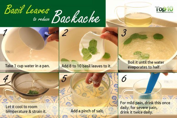 basil tea for backache