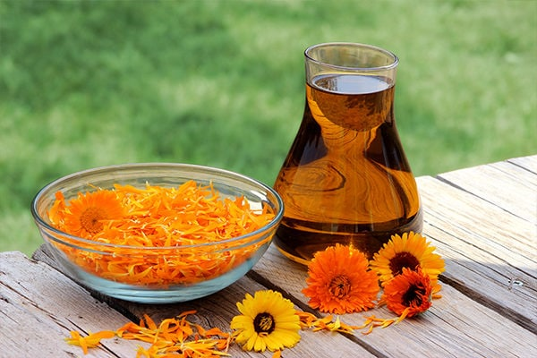 Calendula for chickenpox