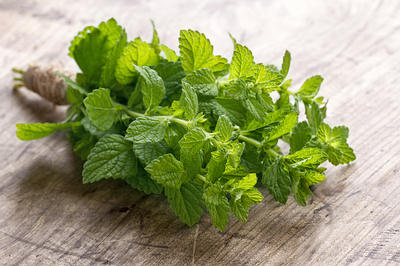 http://www.top10homeremedies.com/wp-content/uploads/2013/02/mint-leaves-pudina-opt.jpg