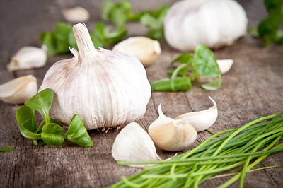 garlic-fresh-opt