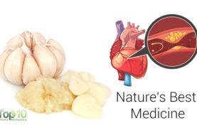 Top 10 Health Benefits of Garlic