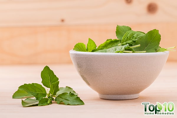 health benefits and nutrition facts of basil