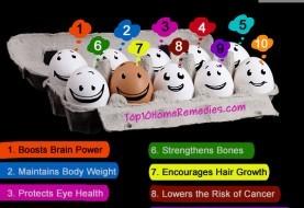 Top 10 Health Benefits of Eggs