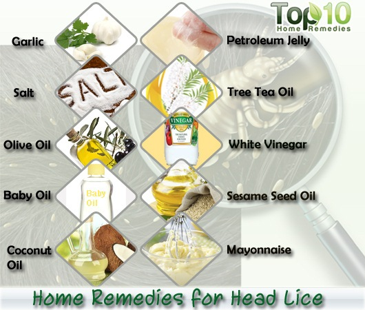 Home Remedies For Head Lice Top 10 Home Remedies