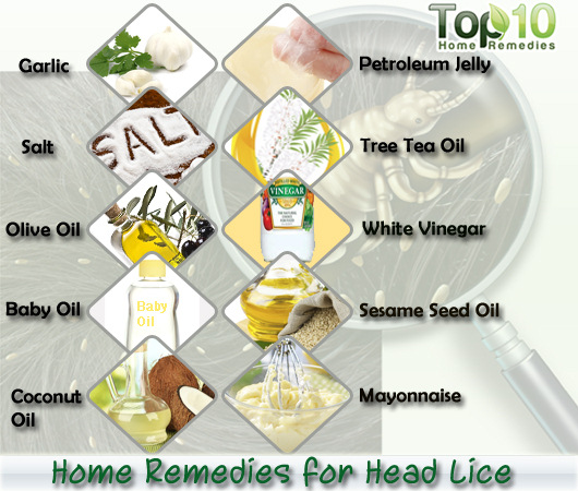 Head lice home remedies. Home Remedies for Head Lice   Top 10 Home Remedies
