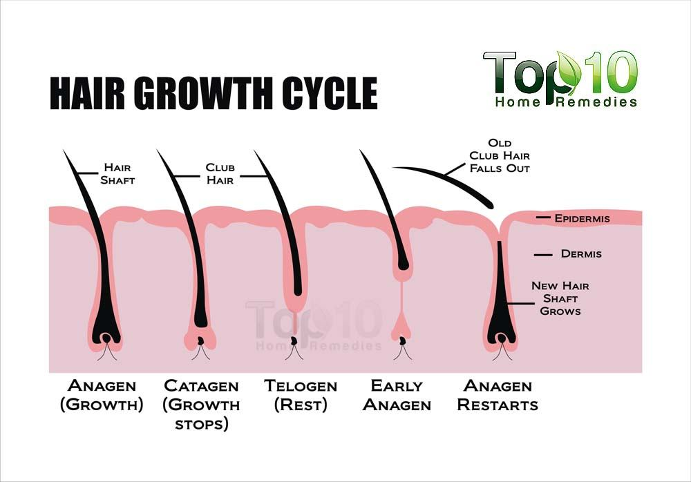 Improve Hair Growth And Thickness Naturally