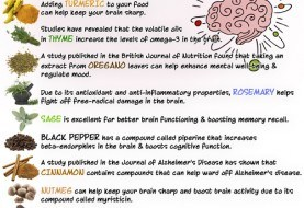 Top 10 Herbs and Spices to Boost Your Brainpower
