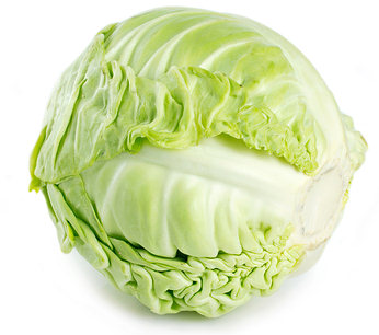 cabbage for obesity and weight loss