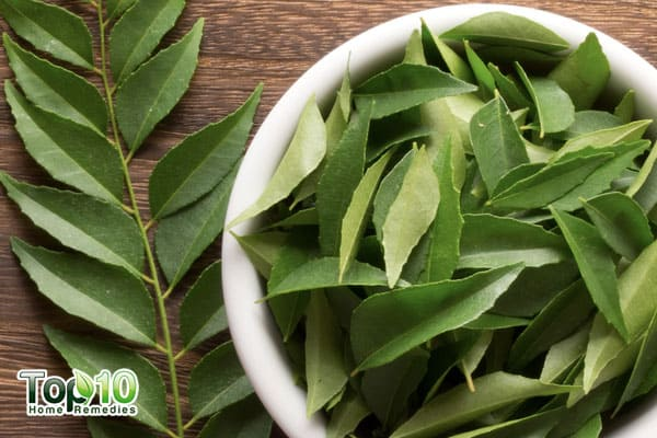 curry leaves for obesity and weight loss