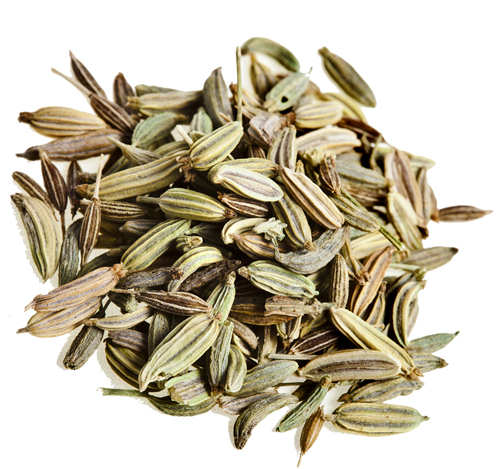 fennel seeds for obesity and weight loss