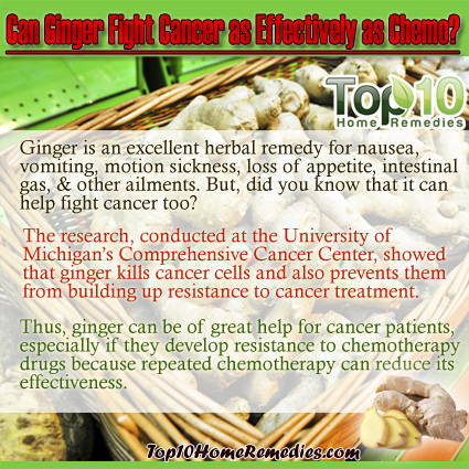 Can Ginger Fight Cancer As Effectively As Chemo Top 10