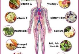Top 10 Essential Nutrients for Your Body