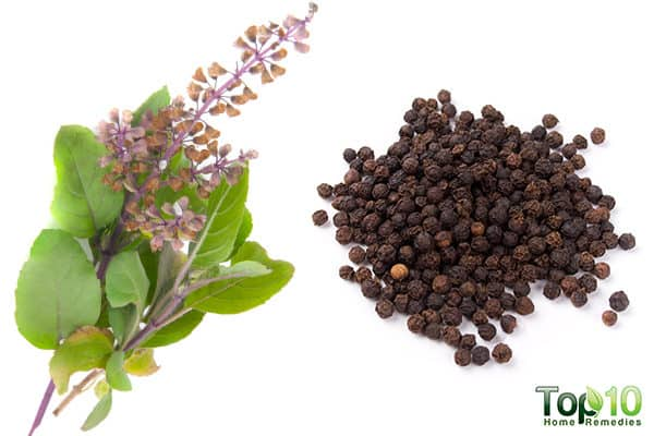 holy basil and pepper remedy for pneumonia