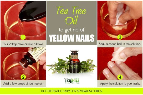 tea tree oil to get rid of yellow nails