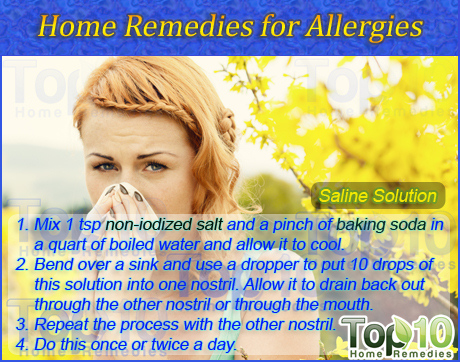 Home Remedies For Dog Allergies Sneezing