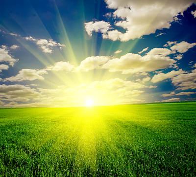enjoy sunlight