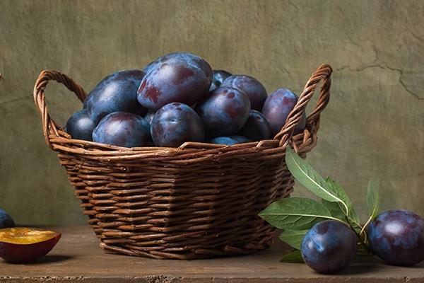 black plum