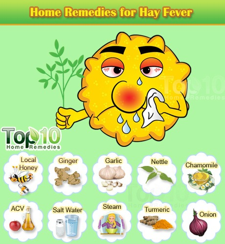 Hay Fever Home Remedies Natural