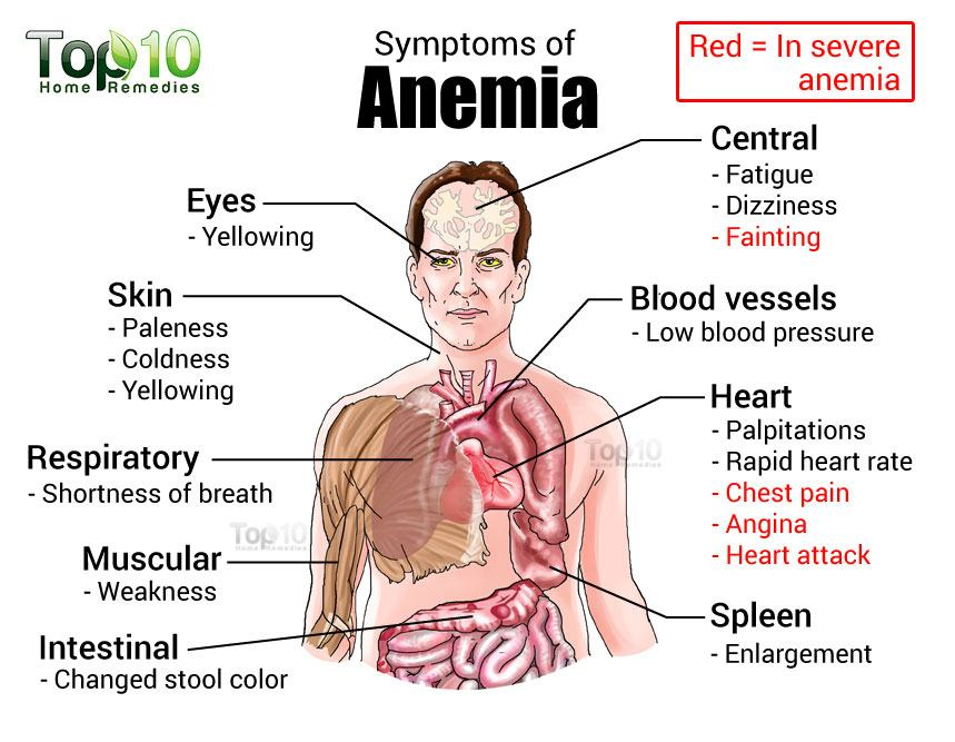 relationship between iron deficiency anemia red blood cells and hemoglobin