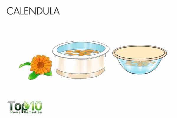 calendula for cellulitis