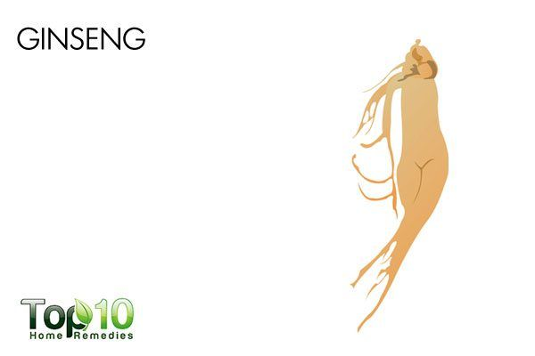 ginseng to ease anxiety and panic attacks