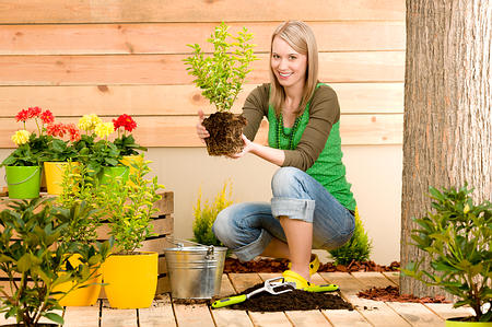 Top 10 Hobbies that Help Calm Your Mind | Top 10 Home Remedies on Gardening  id=53834