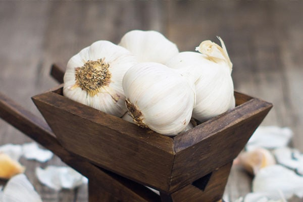 Garlic for minor wounds