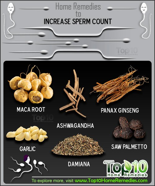 How To Increase Sperm Count Naturally Food