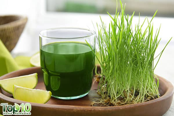 wheatgrass juice to control uric acid level