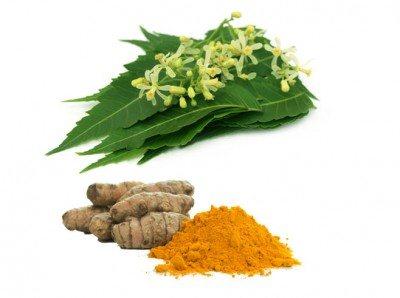 neem and turmeric