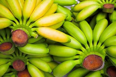 green banana for diarrhea