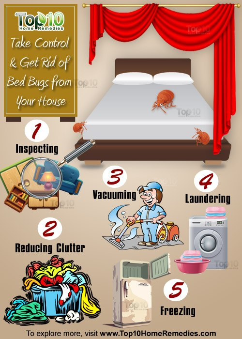 remedies bugs to rid of get home for bed