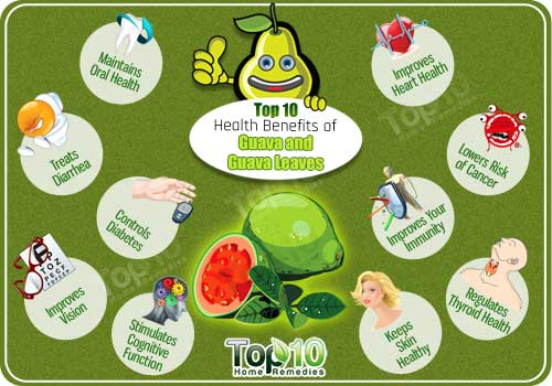 health benefits of guava and guava leaves