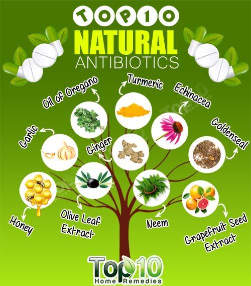 top 10 natural antibiotics