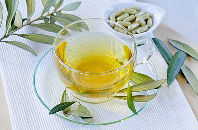 olive leaf tea and extract