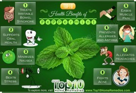 Top 10 Health Benefits of Peppermint