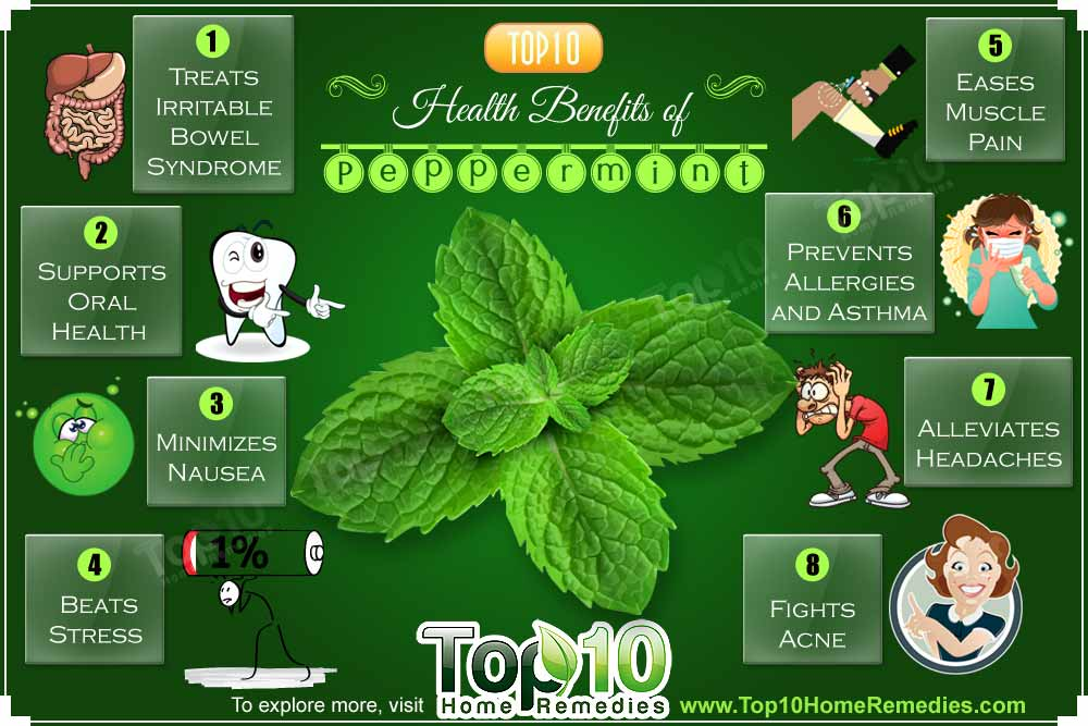10 Homemade Hair Treatments For Dry Dull Or Frizzy Oglow Co