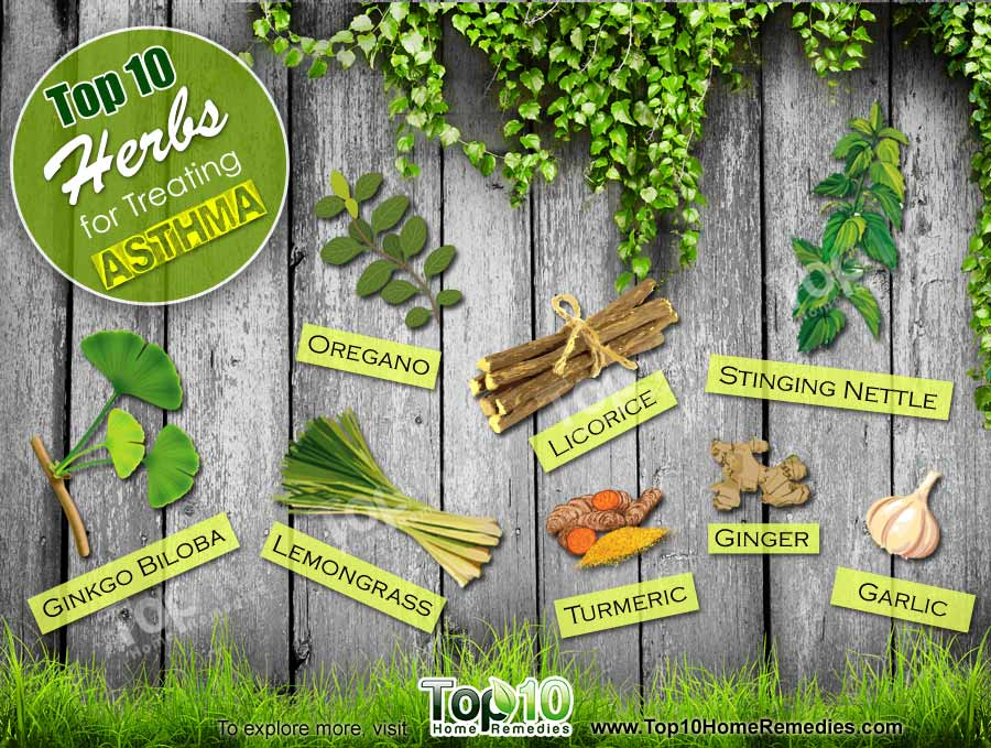 Medicinal Plants And Kitchen Ingredients Used For Home Remedies