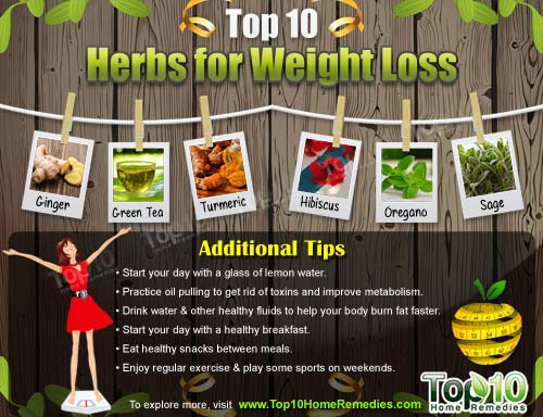 top 10 herbs for weight loss