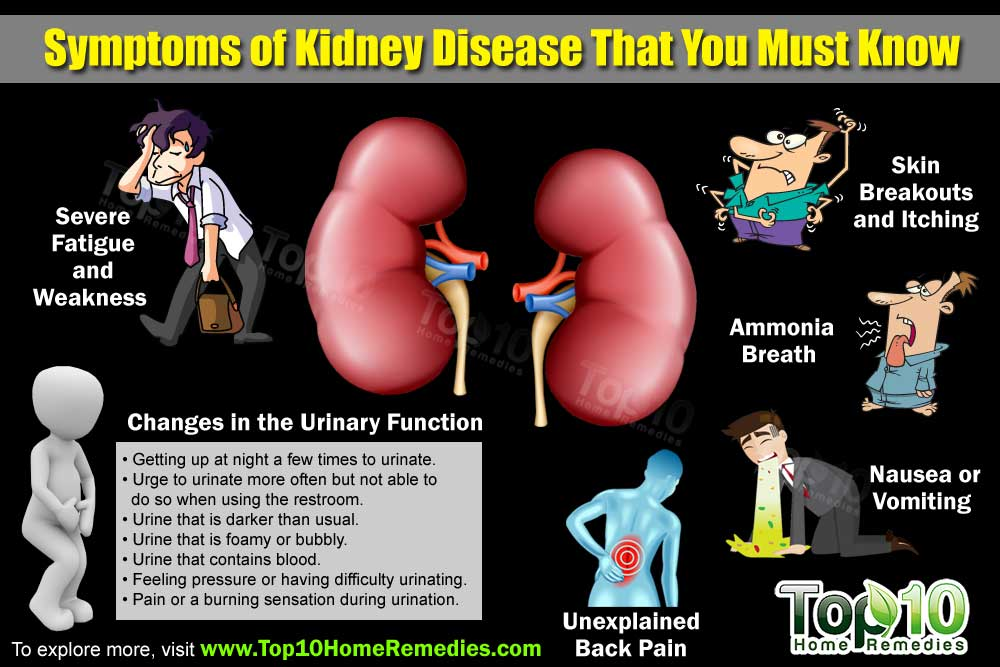 Top 10 Symptoms of Kidney Disease that You Need to Know ...