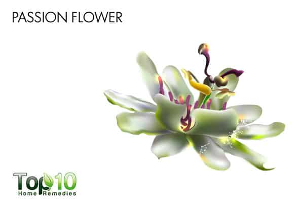 passionflower to reduce stress