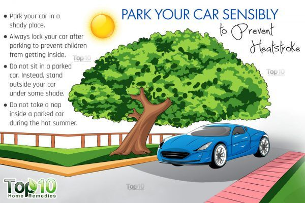 park yourcar sensibly under shade to protect against heatstroke