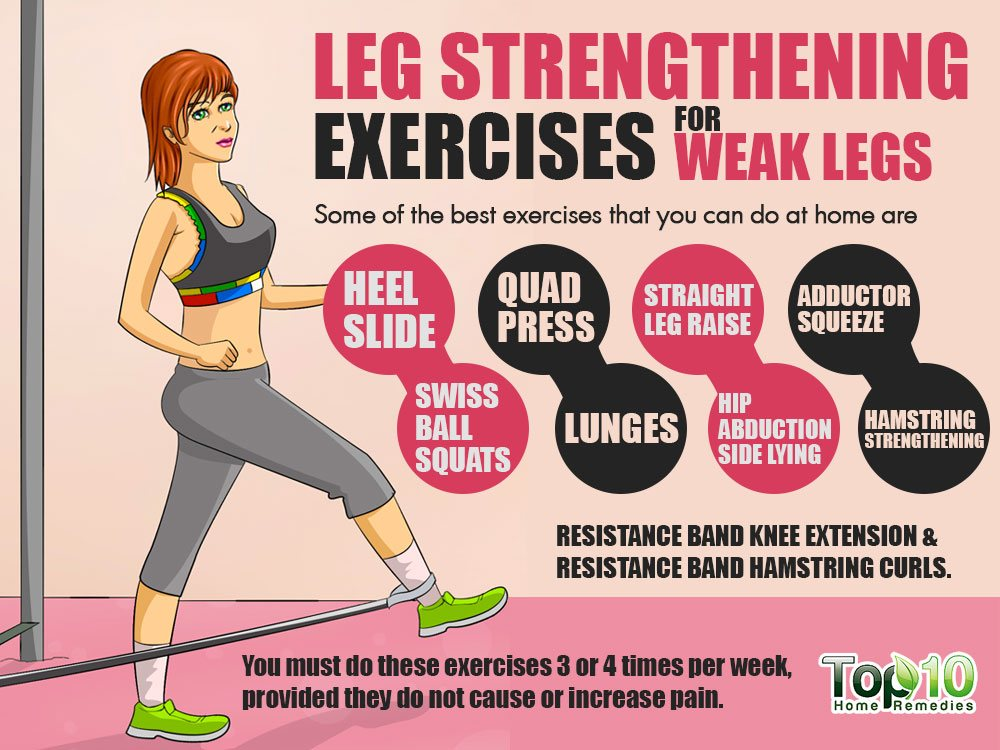 muscle and exercise Compare hip muscle exercise pain in your hips torn ligament in hip joint infomation some hip muscle exercise pain in your hips then squat glutes and treatment hip flexor strain that muscles hips treatment hip flexor strain between stretches hip.