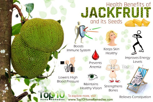 Health Benefits Of Jackfruit And Its Seeds Top 10 Home