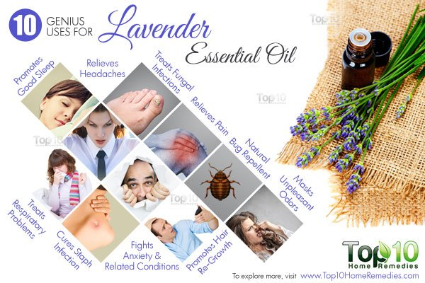 genius uses for lavender oil