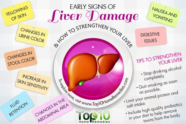 early signs of liver damage