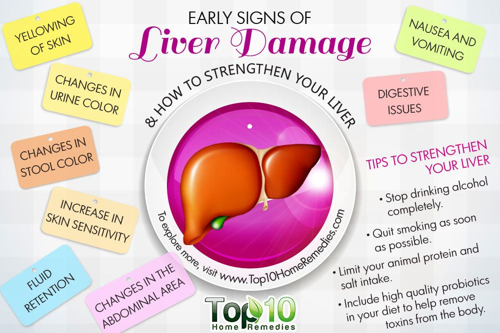 10 early signs of liver damage & how to strengthen your liver, Sphenoid