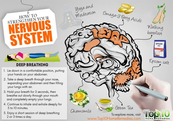 how to strengthen your nervous system