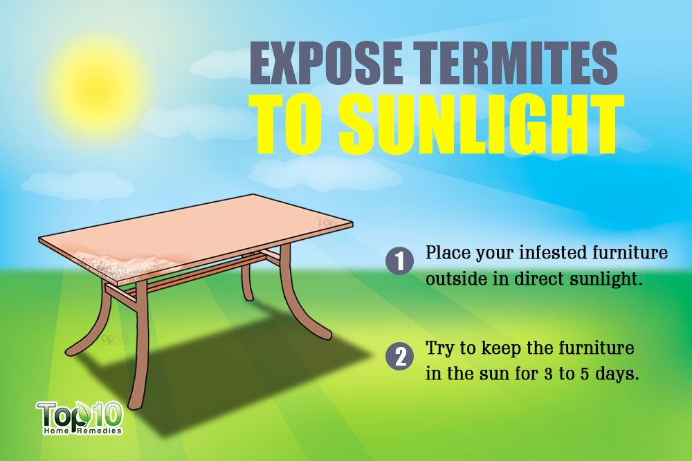 Exposing Them To Sunlight Is A Great Method For Eliminating Termites From A  Piece Of Furniture Or Other Item That Can Be Placed Outside In The Sun.