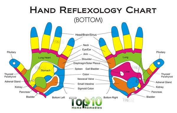 hand reflexology chart - bottom